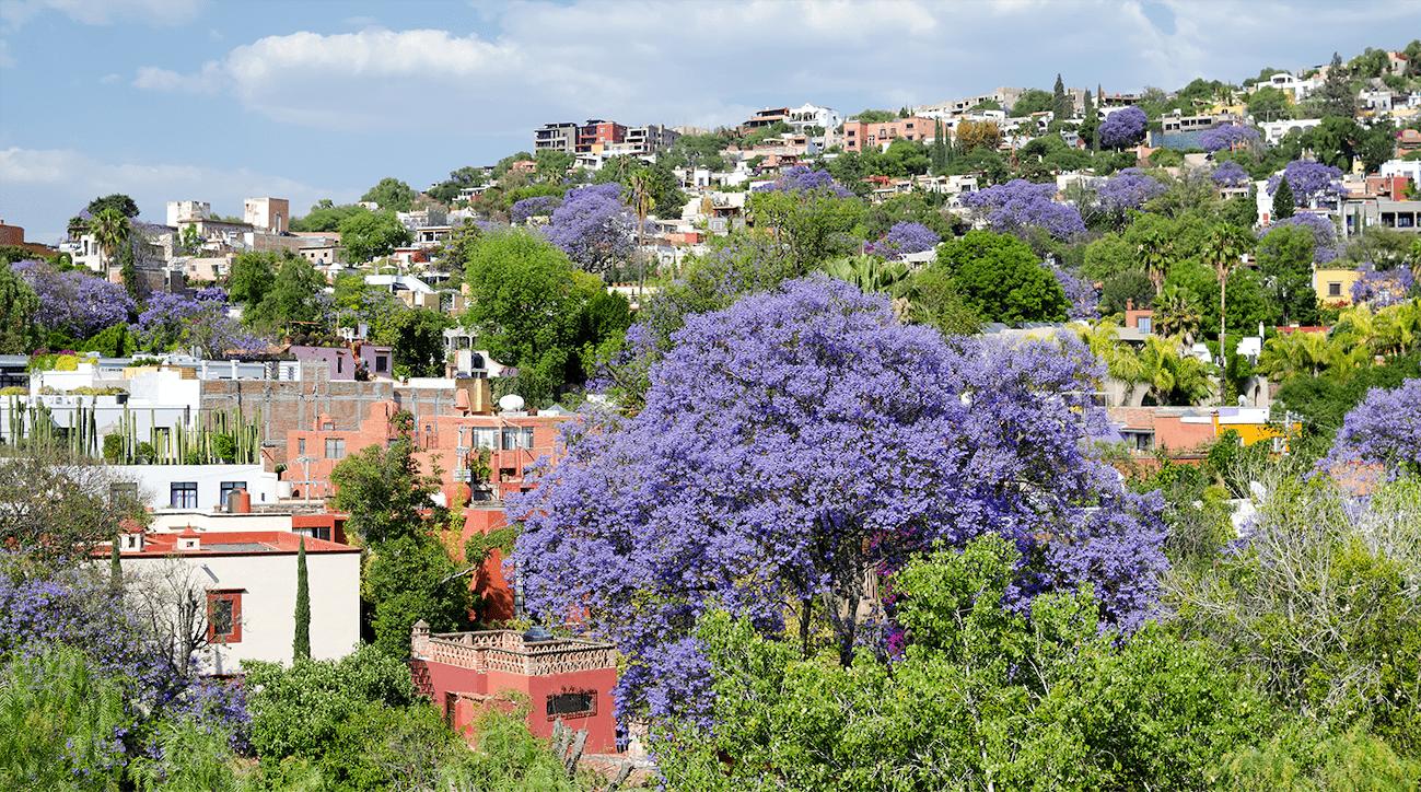 Berkshire Hathaway San Miguel de Allende slide 04