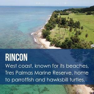 Rincon Homes for Sale