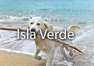 Properties in Isla Verde