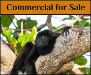 Costa Rica commercial real estate