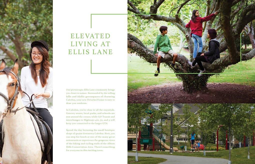 Ellis Lane