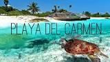 Properties for sale in Playa del Carmen