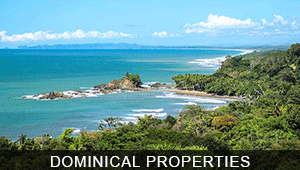 Properties in Dominical for Sale