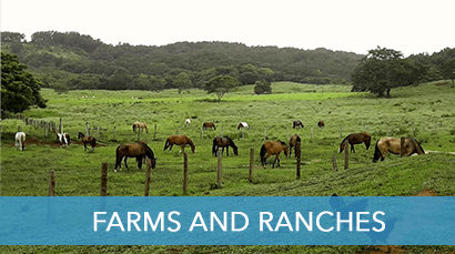 Farms and Ranches for sale In Costa Rica