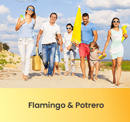 Properties in Flamingo and Potrero