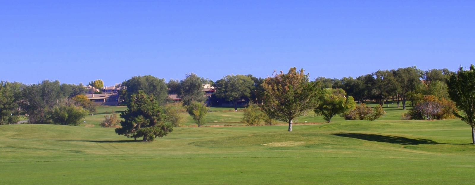 Golf Links Homes for Sale Prescott