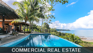 Commercial Real Estate and Hotels for Sale