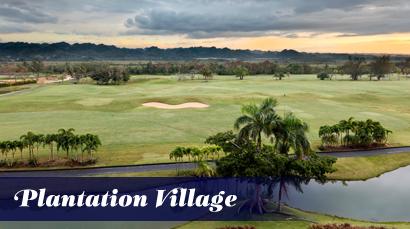 Plantation Village