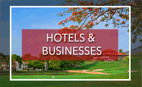 Hotels & Businesses