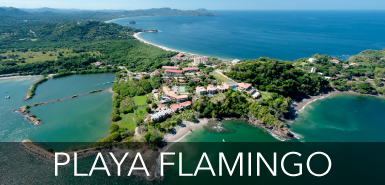 Playa flamingo Homes