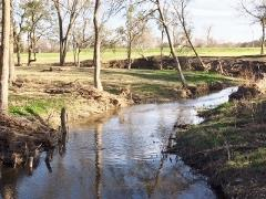 Plum Creek view in Steeplechase Park