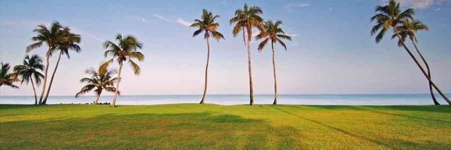 Caribean Lots & Land for Sale - Mexico and Dominican Republic Lots & Land for Sale
