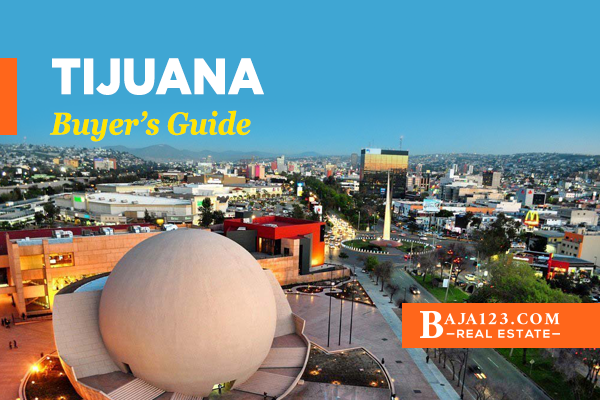 Tijuana Buyer's Guide