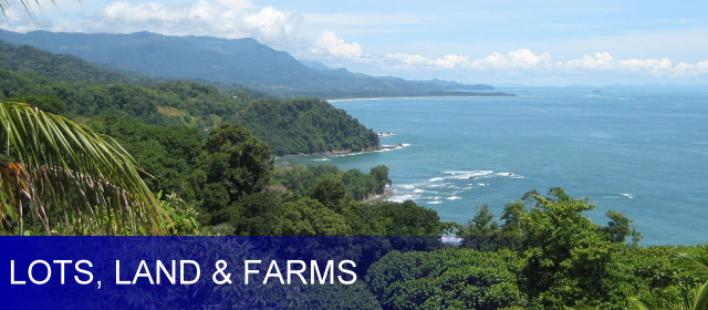 Dominical Lots / Land / Farms