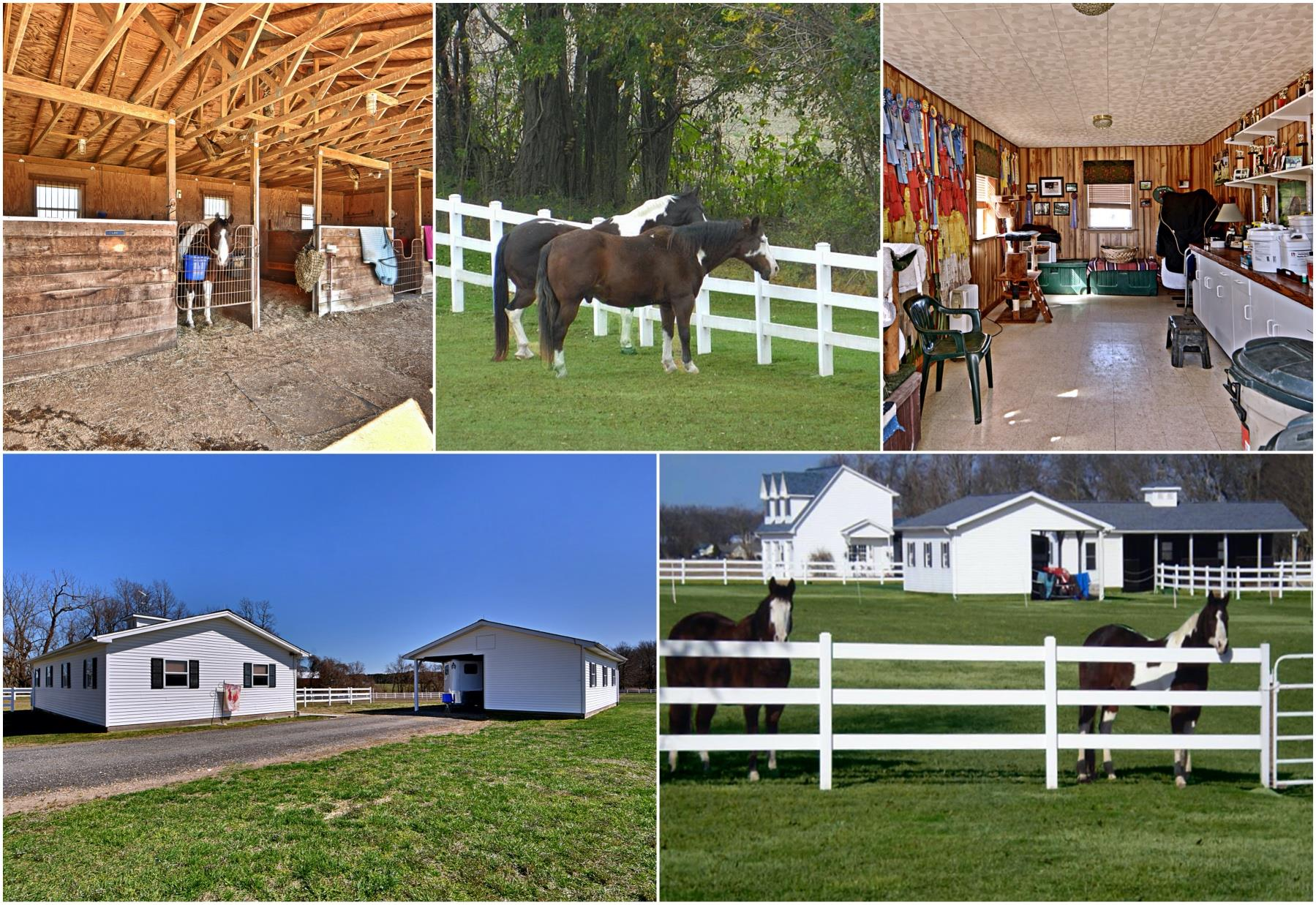 Beautiful Horse Facilities at Foxwood Farm in Bushwood MD - Stable, Pasture and More at 21581 Montfort Rd, Bushwood MD