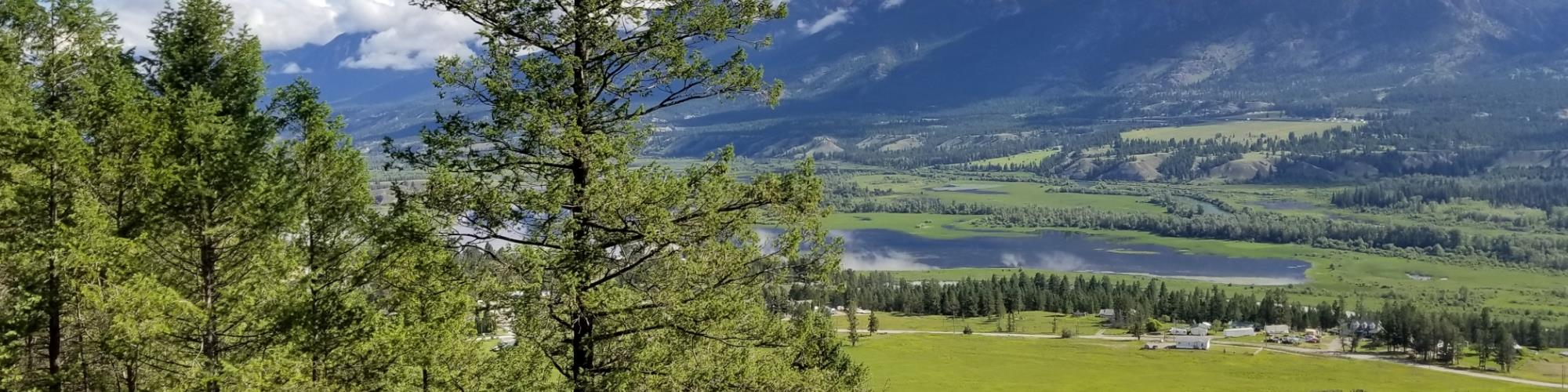 Invermere Real Estate and Homes for Sale