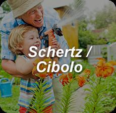 Schertz/ Cibolo