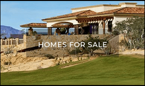 Homes for Sale in Los Cabos