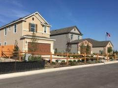 The model home row at Highlands at Grist Mill.