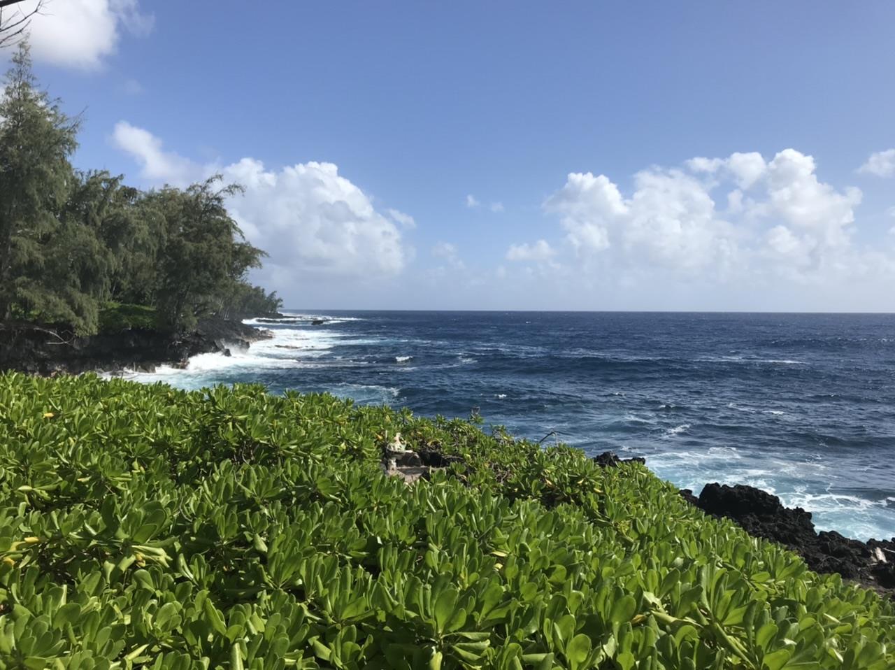 Kalapana_Puna_Big Island Hawaii.jpg