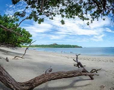 North Pacific Real Estate (Guanacaste)