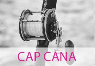 Homes for Sale in Cap Cana