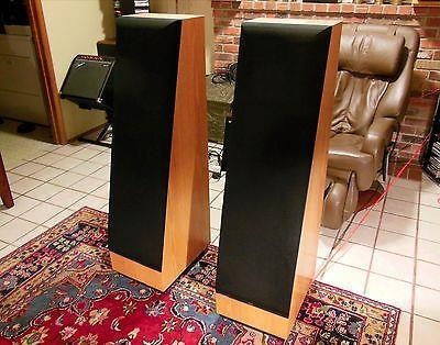 Thiel CS3.6 Speakers in White Oak Finish