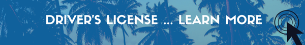 Driver License in Punta Cana
