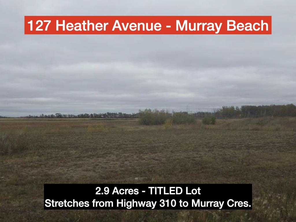 127 Heather Murray
