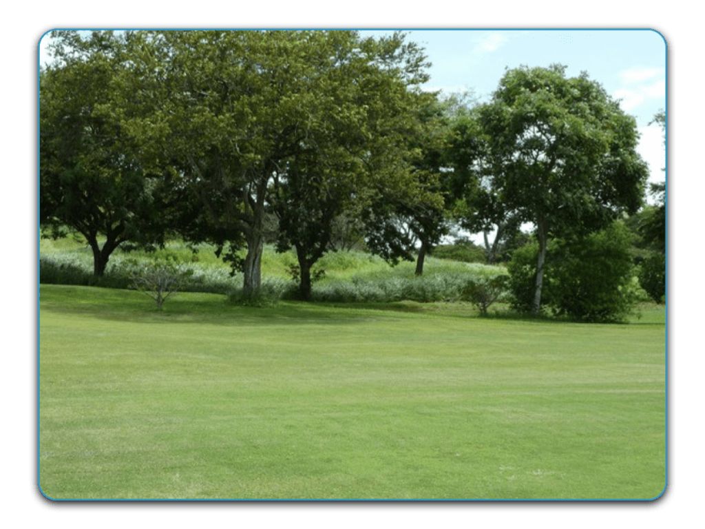 Vista Ridge Golf & Country Club