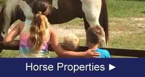 Tooele County UT Horse Properties