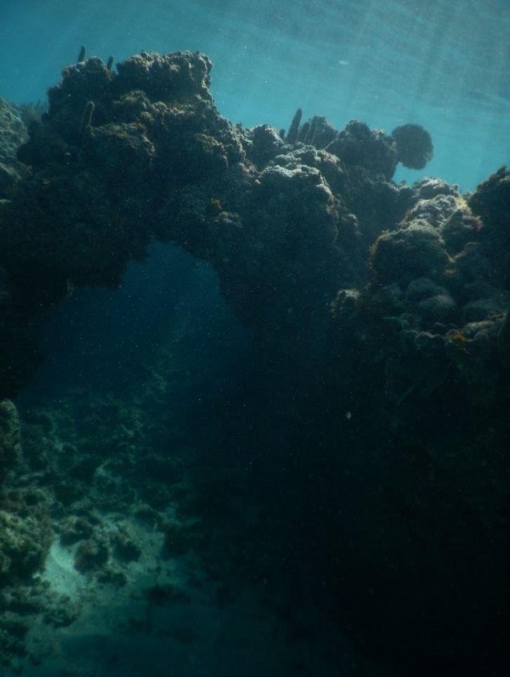 Coral Formations - Memories Jibacoa, Cuba