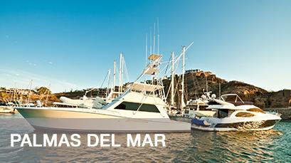 Palmas del Mar