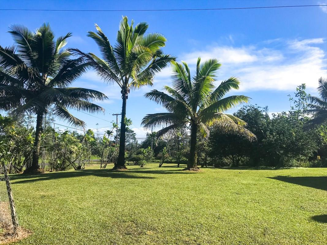Pahoa_Puna_Orchidland_homes.jpg