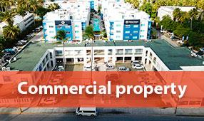 commercial property bavaro