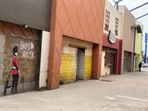 Commercial Real Estate for Sale in Puerta del Mar, Ensenada, Baja California $352,000