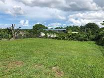 Lots and Land for Sale in Bo. Monte Grande, Cabo Rojo, Puerto Rico $39,900