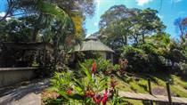 Commercial Real Estate for Sale in Escaleras, Puntarenas $424,000