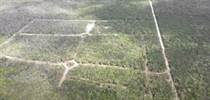 Lots and Land for Sale in Tulum, Quintana Roo $73,000