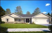 Homes for Sale in Richmond, Michigan $279,900