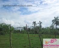 Lots and Land for Sale in La Catalina , Maria Trinidad Sanchez $53,000