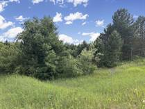 Lots and Land for Sale in Arcadia Township, Michigan $30,000