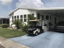 Homes for Sale in Serendipity Mobile Home Park, Clearwater, Florida $63,900