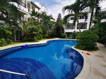 Condos for Rent/Lease in Downtown Playa del Carmen, Playa del Carmen, Quintana Roo $820 monthly