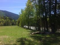 Lots and Land for Sale in Cherryville, Vernon, British Columbia $549,900