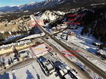 Commercial Real Estate for Sale in Radium Hot Springs, British Columbia $299,999