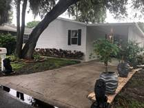 Homes for Sale in Fountainview, Tampa, Florida $54,900