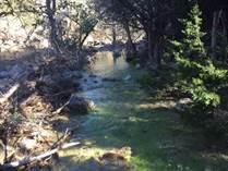 Lots and Land Sold in Lake Ridge at Canyon Lake, Canyon Lake, Texas $84,900
