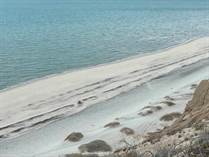 Lots and Land for Sale in North San Felipe, San Felipe, Baja California $17,300,000