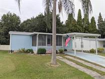 Homes for Sale in Lake Pointe Village, Mulberry, Florida $18,500